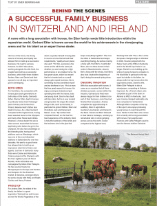 Article-Showjumping-International-Etter-Horses