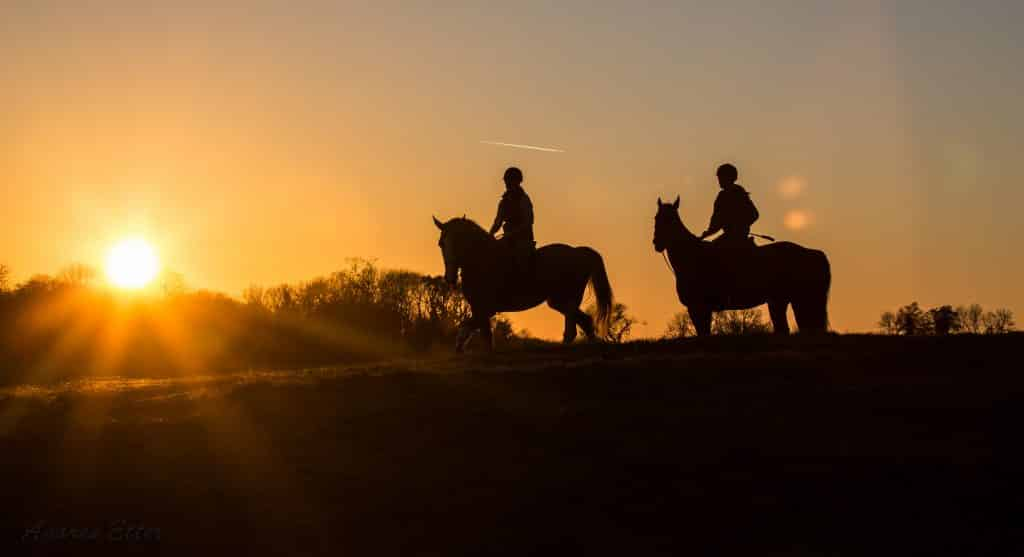 Horse-riders-in-sunset-Ireland-Freedom-Irish-Horsebreeding