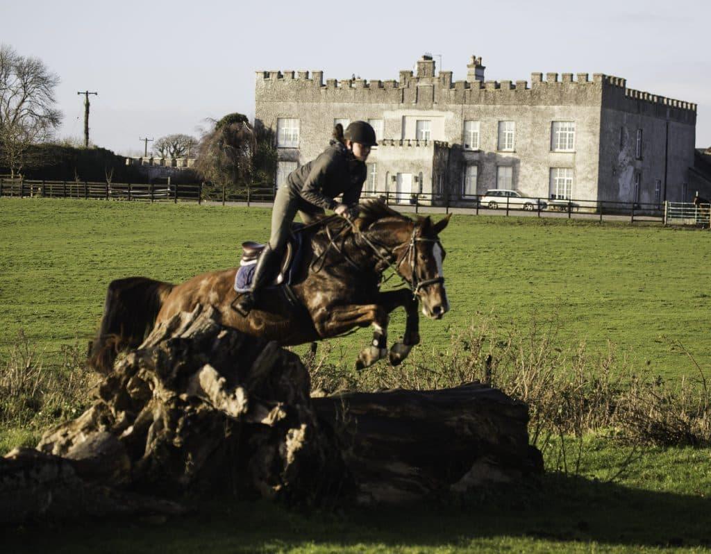 Sales-Horses-Jumper-Broodmare-Irish-Horse-Showjumping-Cross-Training