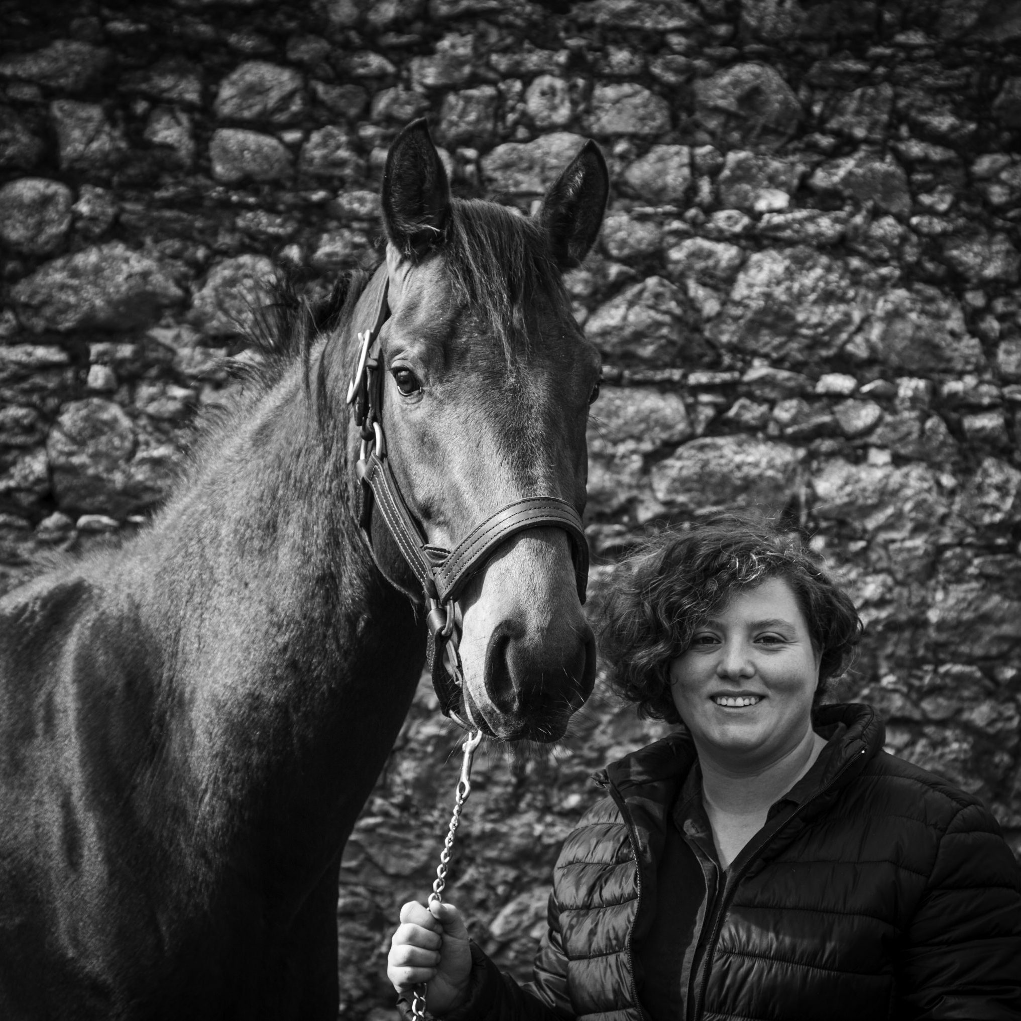 Working-Farm-Ireland-Studfarm-Groom-Rider-Staff-Internship